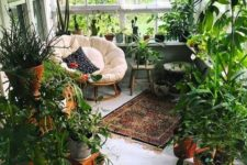 a small sunroom turned into an orangery – a couple of chairs and lots of potted greenery, the space feels like outdoors