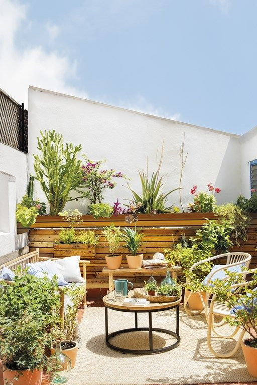 a summer space with a wooden wall, rattan furniture and lots of potted greenery and blooms for a garden feel