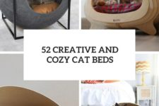 52 creative and cozy cat beds cover