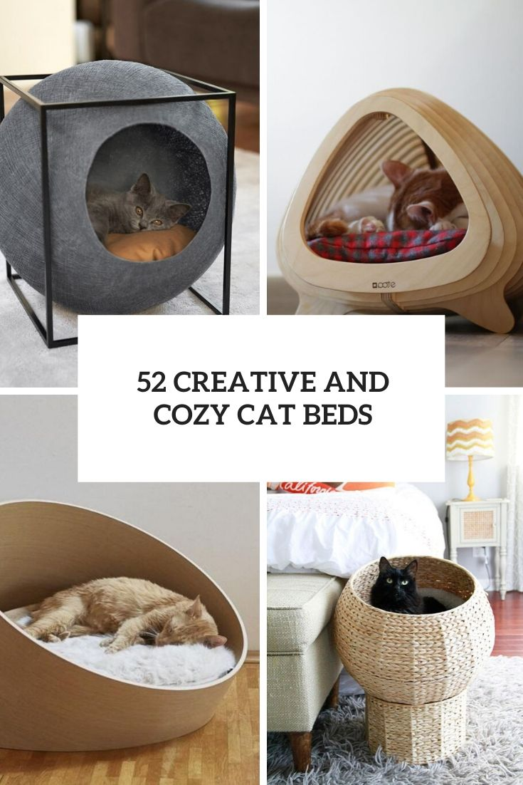 52 Creative And Cozy Cat Beds