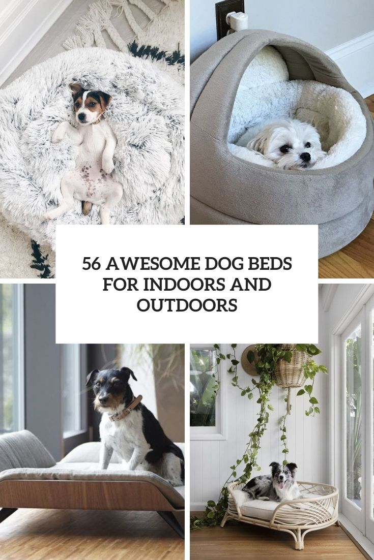 56 Awesome Dog Beds For Indoors And Outdoors