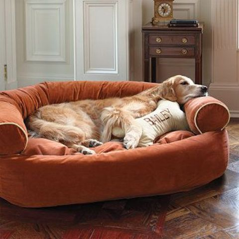 a large soft pet couch in orange, with a favorite pillow is a stylish and cool idea for many interiors and a soft bed for your pet