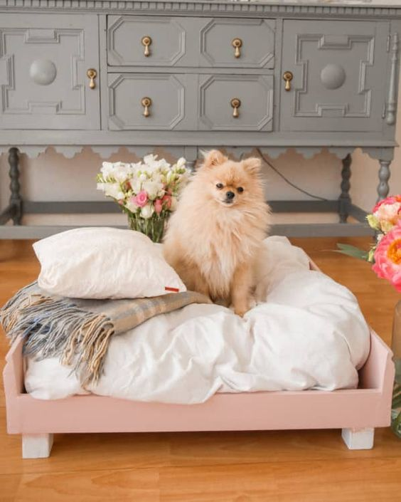 a pretty pink dog bed with an oversized cushion and pillows plus a blanket is a lovely glam idea for your littel doggo