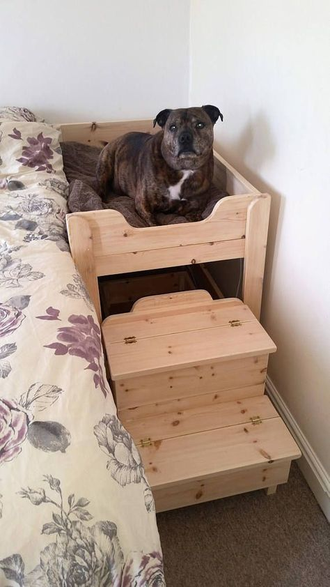 a simple wooden dog bed by the side of a human bed and with an additional staircase to make going up easy