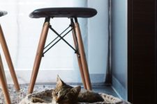 a stylish chunky knit round cat bed is a cool idea for a modern or contemporary space