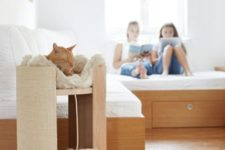 a stylish modern cat bed with a toy is a cool addition to a modern space that won't spoil the decor