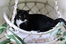 a white macrame suspended cat bed with a cushion and macrame will finish off a boho space