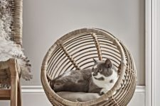 a wicker and rattan pod cat bed is a very stylish solution with a modern farmhouse feel