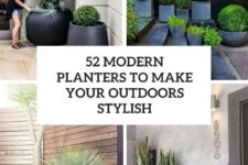 52 modern planters to make your outdoors stylish cover