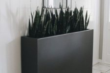 a modern tall, long and narrow black planter will accent any indoor or outdoor space at its best