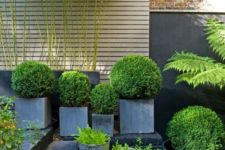 an arrangement of square and cup-like concrete planters of various sizes and heights looks very edgy and modern