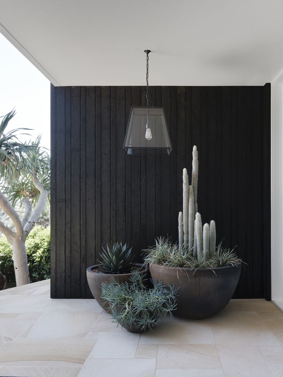 black tall bowl-like planters with various greenery will give a cool modern look to your front porch or backyard