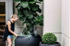 modern black oversized rounded planters will make your outdoor space look very cool and very edgy