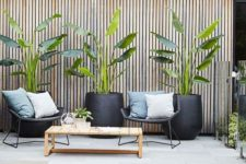 modern tall black planters with tropical plants are extra bold and chic and will give a modern feel to your space