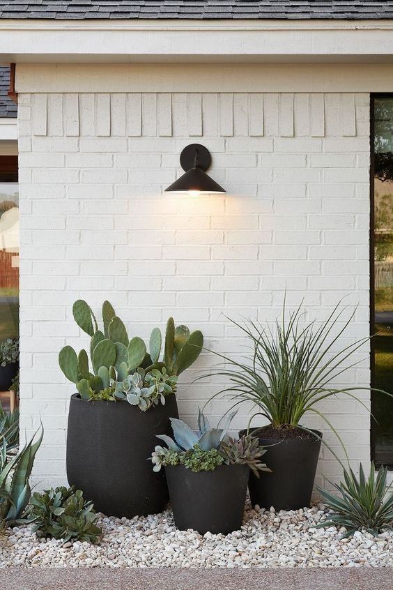 stylish black planters of mug and traditional shapes but oversized ones are catchy and very creative