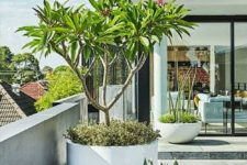 white and grey planters of various sizes and various heights are great to create really a modern feel in your space