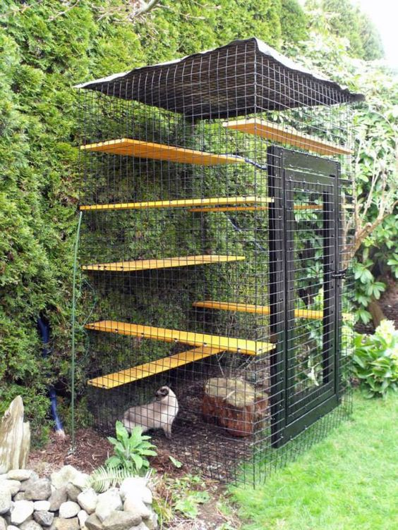 a natural catio with a living wall, some shelves and a tree stump for spending some time outdoors