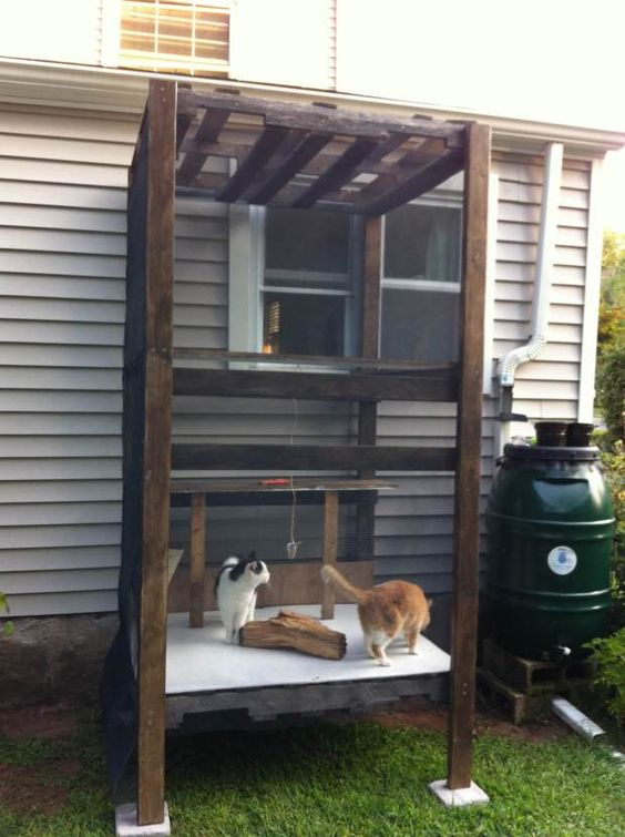 a tiny cat patio with cat beds and a tree branch plus some toys can be attached to the wall of your home