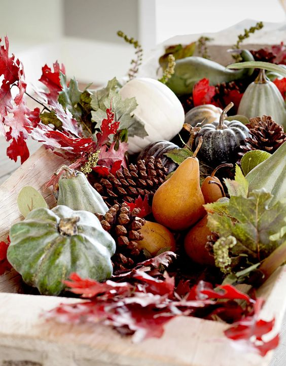 a lovely natural decoration of a white wooden bowl with red leaves, pumpkins, pinecones and gourds looks very autumnal