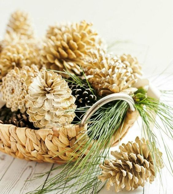 a wicker bowl with usual and bleached pinecones looks pretty   just add some evergreens