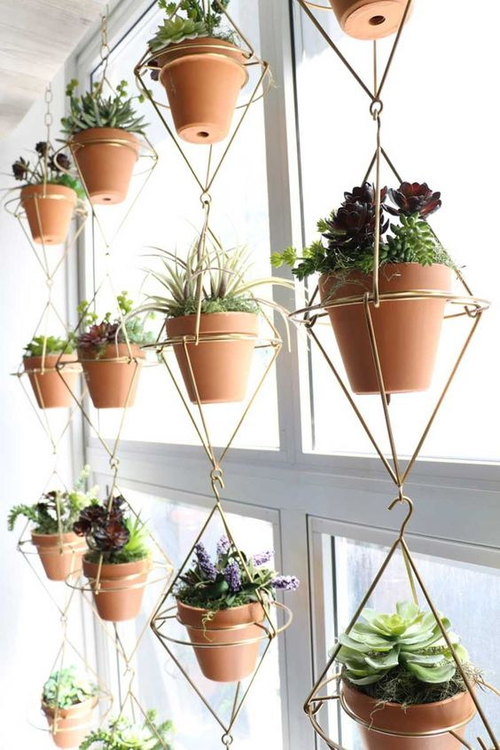 a creative window solution with many succulents in pots and in a gold wire structure is a cool idea