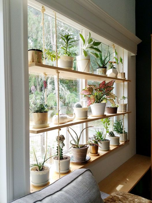 a hanging shelf with lots of plants in pots of various kinds is a cool natural decoration for a window for privacy and not only