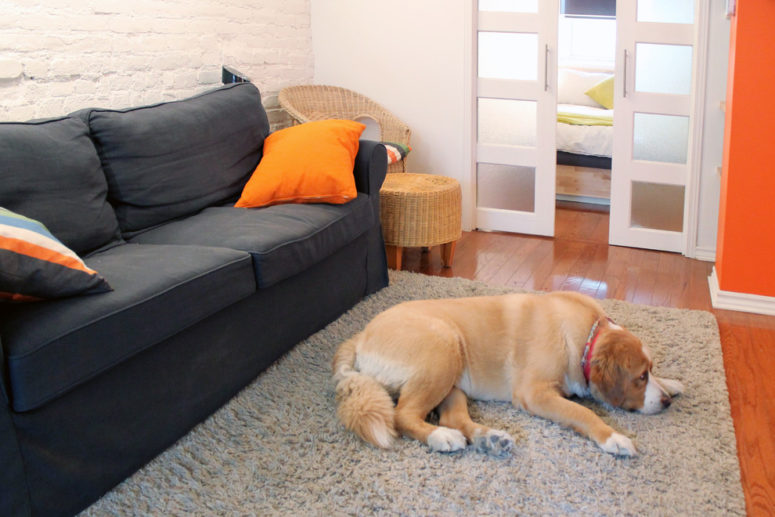 dark sofa works well in a bright orange basement living room (Laura Garner)