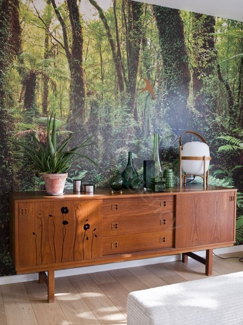 forest wall murals help you to merge with nature and relax without leaving home