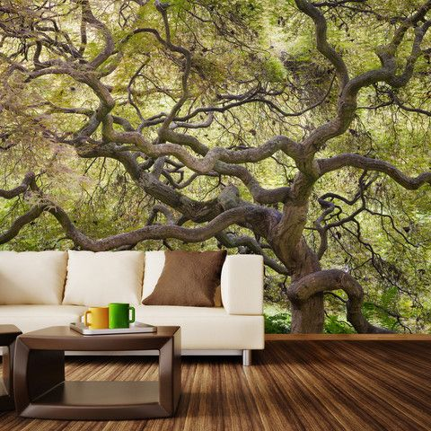 Japanese maple wall mural fills your home with a natural vibe