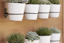 33 create a whole succulent garden attaching planters to the wall
