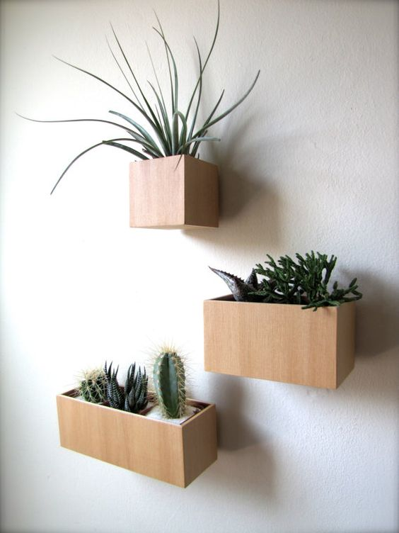 Indoor Wall Planters Decor