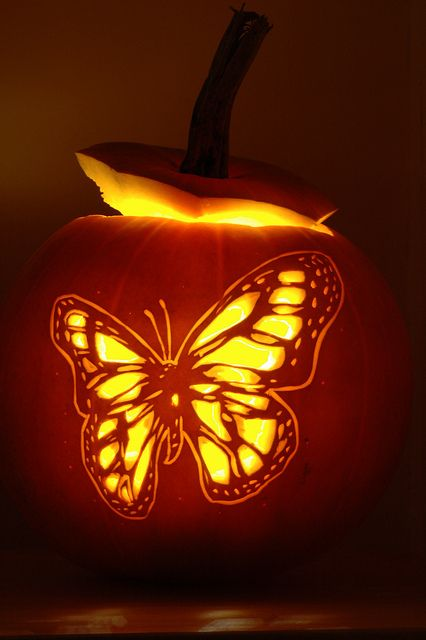 chic butterfly pumpkin for girlish decor