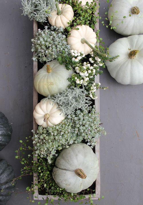 neutral box centerpiece with pumpkins and greenery