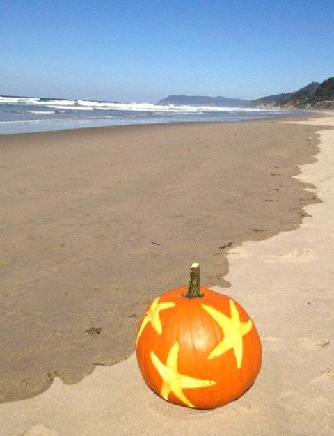 star fish carvings on a pumpkin to highlight your beachside location