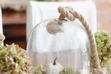 18 simple display with pumpkins, hydrangeas, acorns and pinecones in a cloche