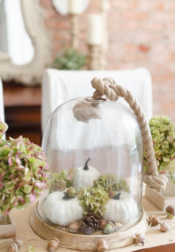 simple display with pumpkins, hydrangeas, acorns and pinecones in a cloche