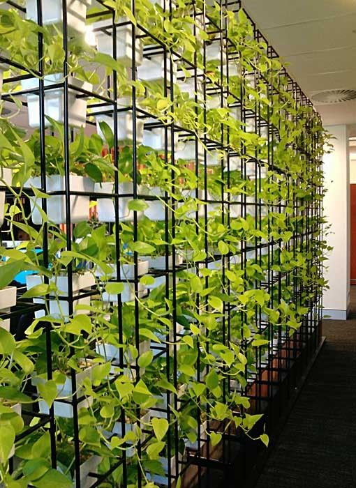 vertical garden space divider adds a fresh touch and is a unique solution