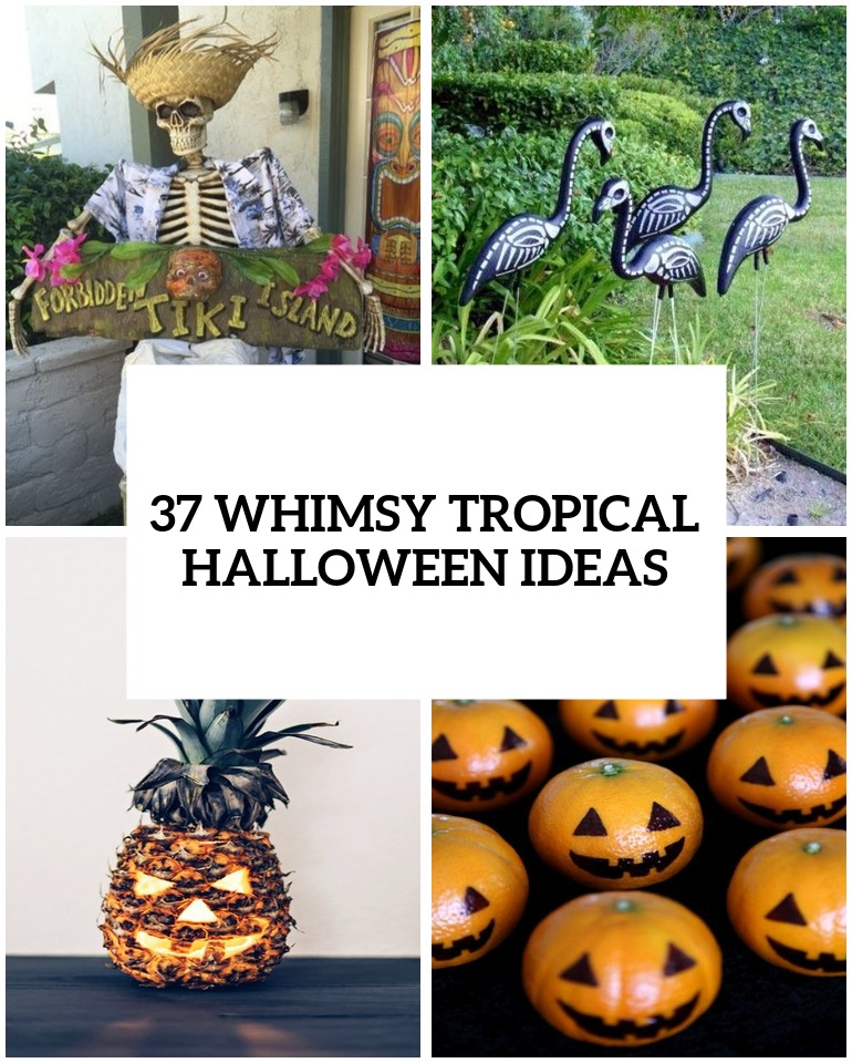 whimsy and bold tropical halloween ideas cover