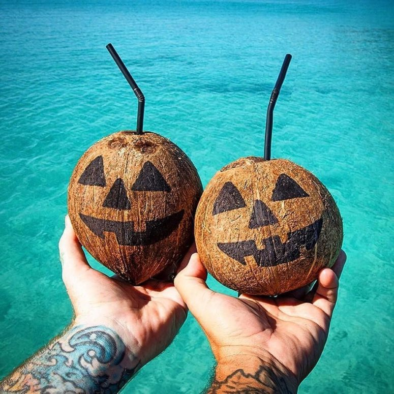 coconuts could be used as a nice alternative to pumpkins