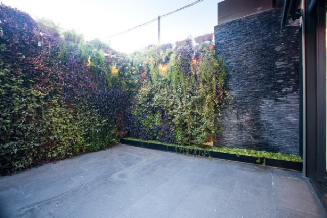 The terrace has tall walls to keep some privacy, and the walls are covered with moss and greenery