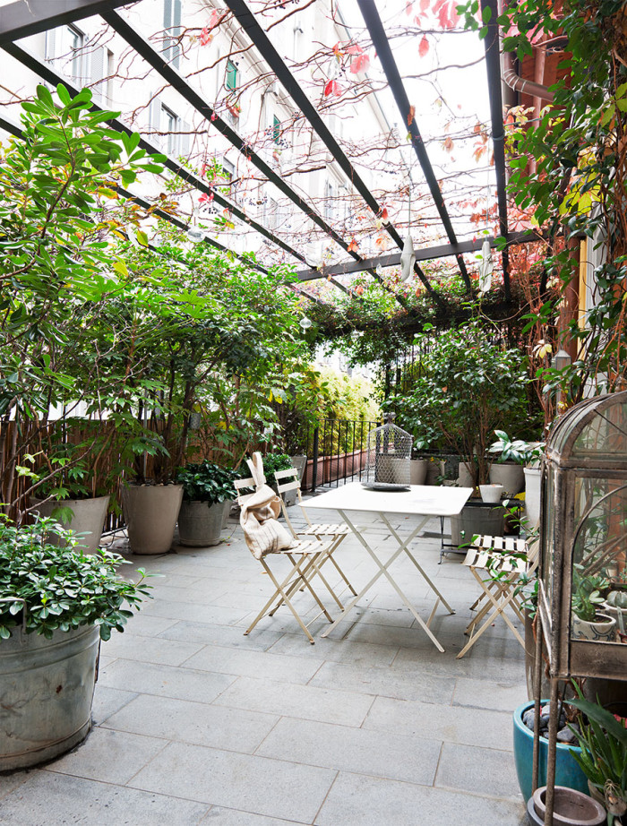 The Patio Is Like A Small Piece Of Jungle With Palm Trees And Unusual  Flowers