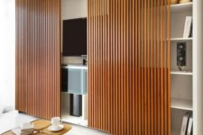 22 bamboo screens for hiding a TV unit
