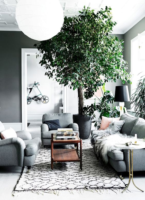 Make Green Accents In Your Dove Grey Living Room With Potted Greenery And Plants