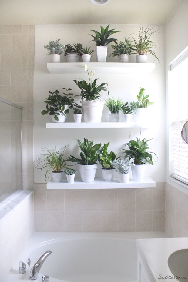 In a bathroom IKEA's floating shelves could b used to create a plant wall.
