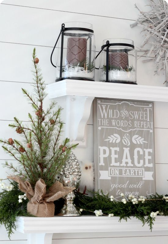 a burlap wrapped small tree with an evergreen garland