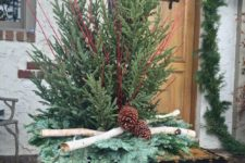 04 a container with fir trees, branches and pinecones