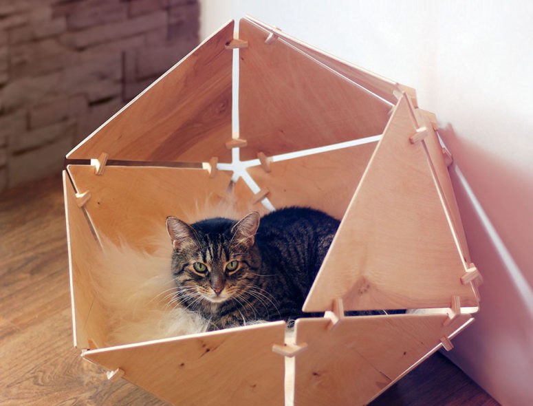 Most of cats prefer having some personal space and they deserve the best - something like this trendy cat bed