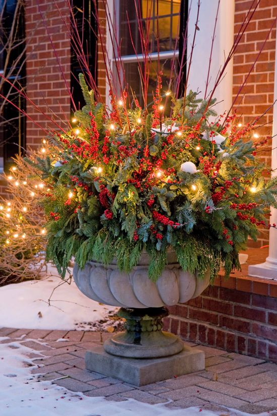 oversized urn with evergreens, faux berries and red branches is glowing up thanks to the lights