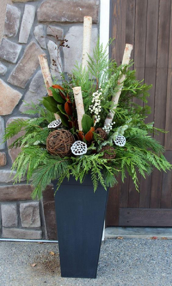 a holiday container with evergreens, branches, lotus