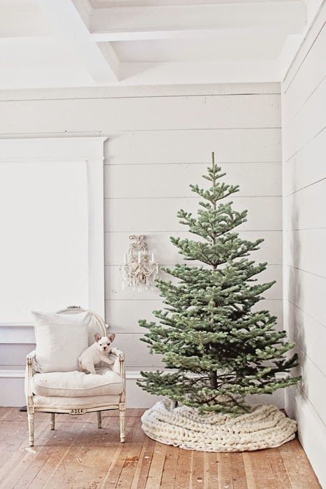 cover your minimal tree without decor with a cozy knit blanket